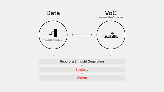 Diagram showing data and voice of the client as referenced in text
