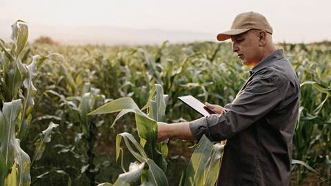 Man with tablet in field