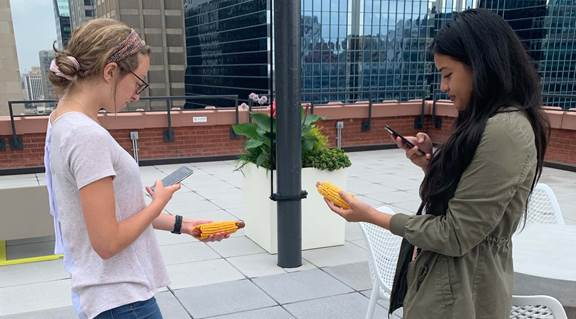 UX designers testing app with corn